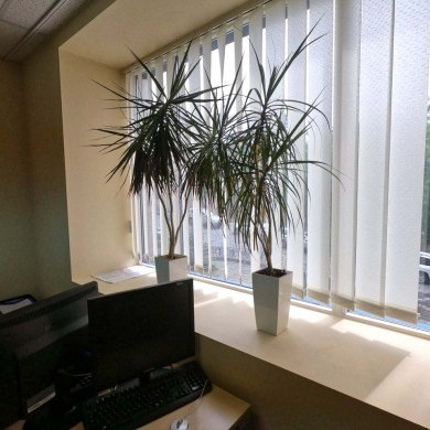 Аренда офиса в бизнес центре на 1 этаже площадью 110 кв м